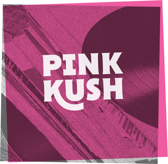 Pink Kush is an award winning Indica strain with aromas of pine and lemon